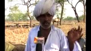Rajasthani indian Folk Song Singing by a old Rajasthani Man