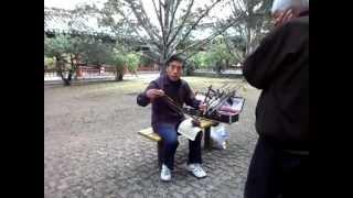 Игра на эрху. Пекин. Храм Неба(Интересный инструмент - арху. Мужчина на них играет и сам их собирает (и конечно продает - 700 юаней за инструм..., 2012-06-29T13:26:53.000Z)