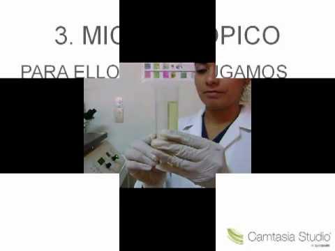 revisão rápida de bioquímica #7: biossíntese do HEME de YouTube · Duração:  4 minutos 40 segundos