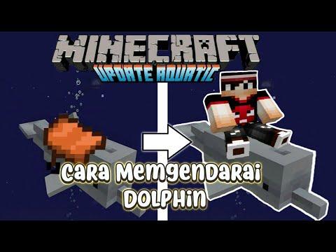 Cara Mengendarai Dolphin Di Minecraft Aquatic Update