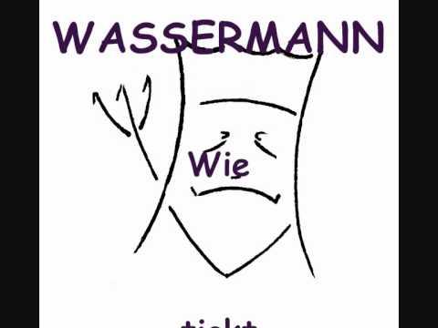 Wassermann partnersuche