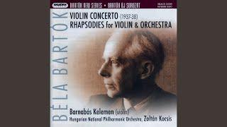 Violin Concerto (No. 2) - I. Allegro non troppo