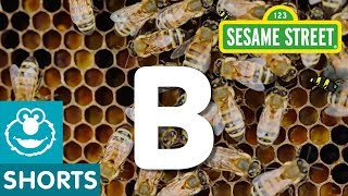 Sesame Street: B is for Bees