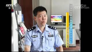 《生活提示》 20190912 这些交通标志别混淆| CCTV