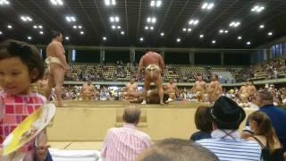2017年8月8日 大相撲 巡業 渋谷青山学院場所.