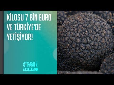 Kilosu 7 bin euro ve Türkiye'de yetişiyor!