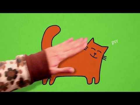minibombo presenta - Il libro gatto