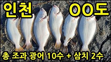 인천 한 자리에서 광어10마리를 뽑았다고? 인천 광어낚시 포인트