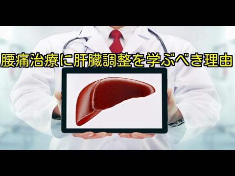 筋膜はがし 筋膜リリース 腰痛に肝臓治療を学ぶべき理由