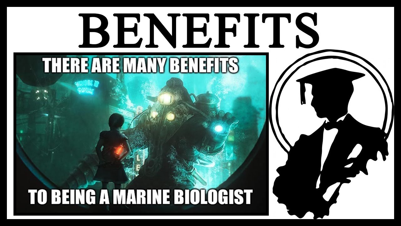 Why Are There Many Benefits To Being A Marine Biologist?