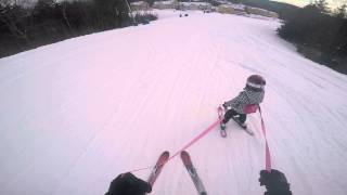 Smith Slalom