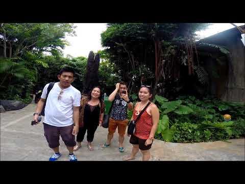 Universal Studios Singapore 2015