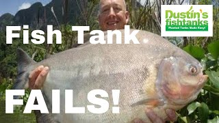 Fabulous Fish Tank FAILS