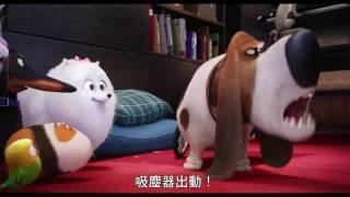 【寵物當家】卡哇伊廣告-6月29日 歡樂登場