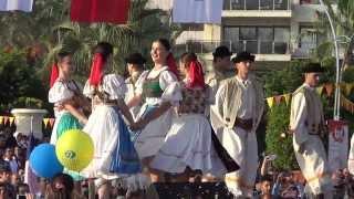 mersin narenciye festivali slovakya grubu 17 11 2013 hd