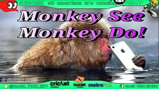 Monkey see Monkey Do Set up Fee Boost Cricket Metro By T-Mobile In Store Experience Lost