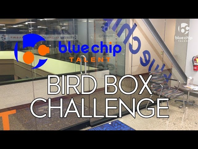 Bird Box Challenge: Blue Chip Talent