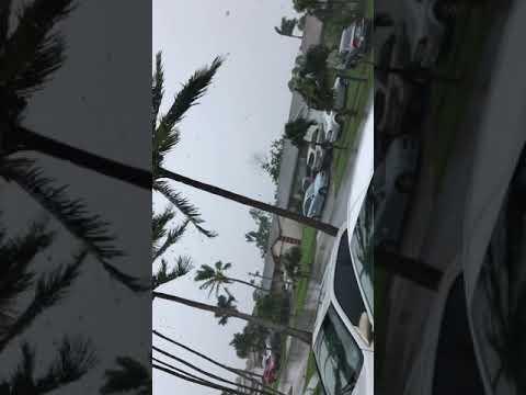 Hurricane Irma ( Lake Worth, Florida)