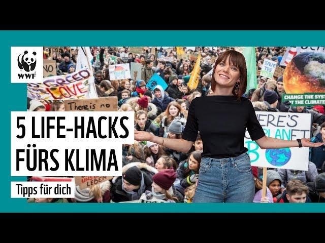 Demonstriere am 20.09. für Klimaschutz & weitere Klima-Tipps | WWF Deutschland