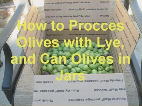 How to Process Olives with Lye and Can Olives in Jars