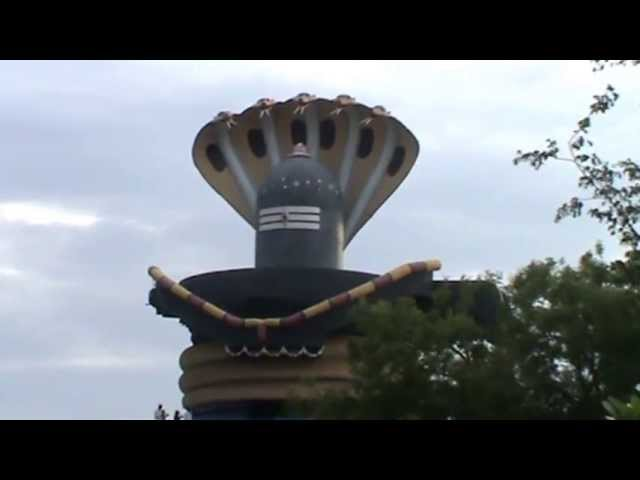 Shiva lingam with 5 headed snake Travel Video