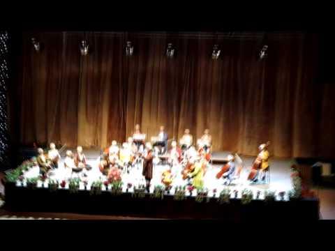 Vienna Mozart Orchestra във Велико Търново