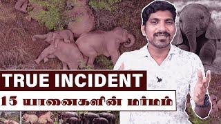 15 யானைகளின் மனம் நெகிழும் உண்மை சம்பவம் | China 15 Elephant's Mystery | Tamil Pokkisham