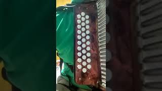 introducción canción la juntera Beto Jamaica rey vallenato