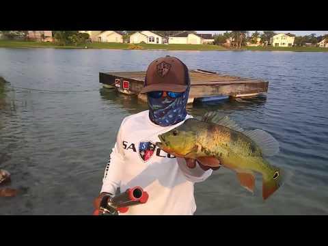ROCKET FISHING ROD Catches FISH!!!