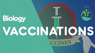 What Are Vaccinations?   Biology for All   FuseSchool Video