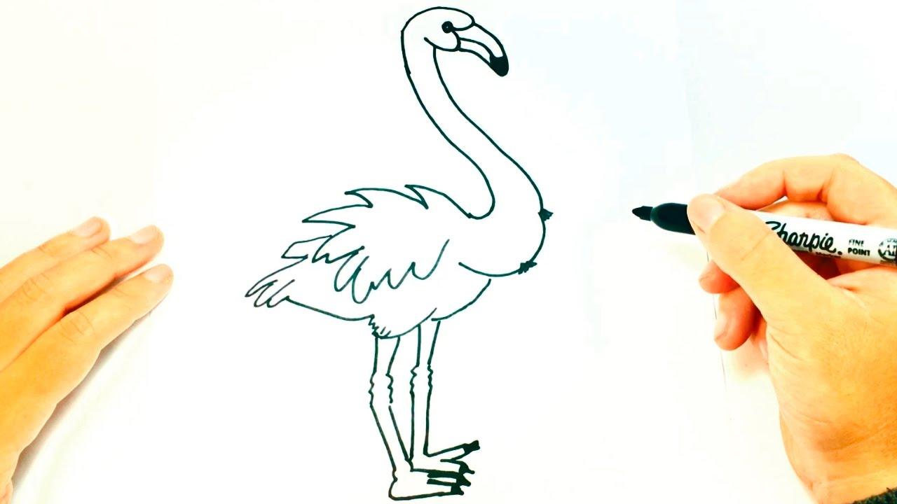 How To Draw A Flamingo Flamingo Easy Draw Tutorial Youtube