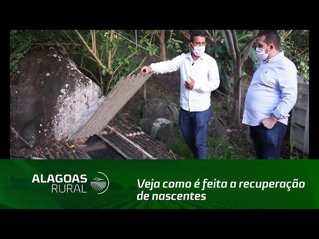 Veja como é feita a recuperação de nascentes na Fazenda Vila Almeida