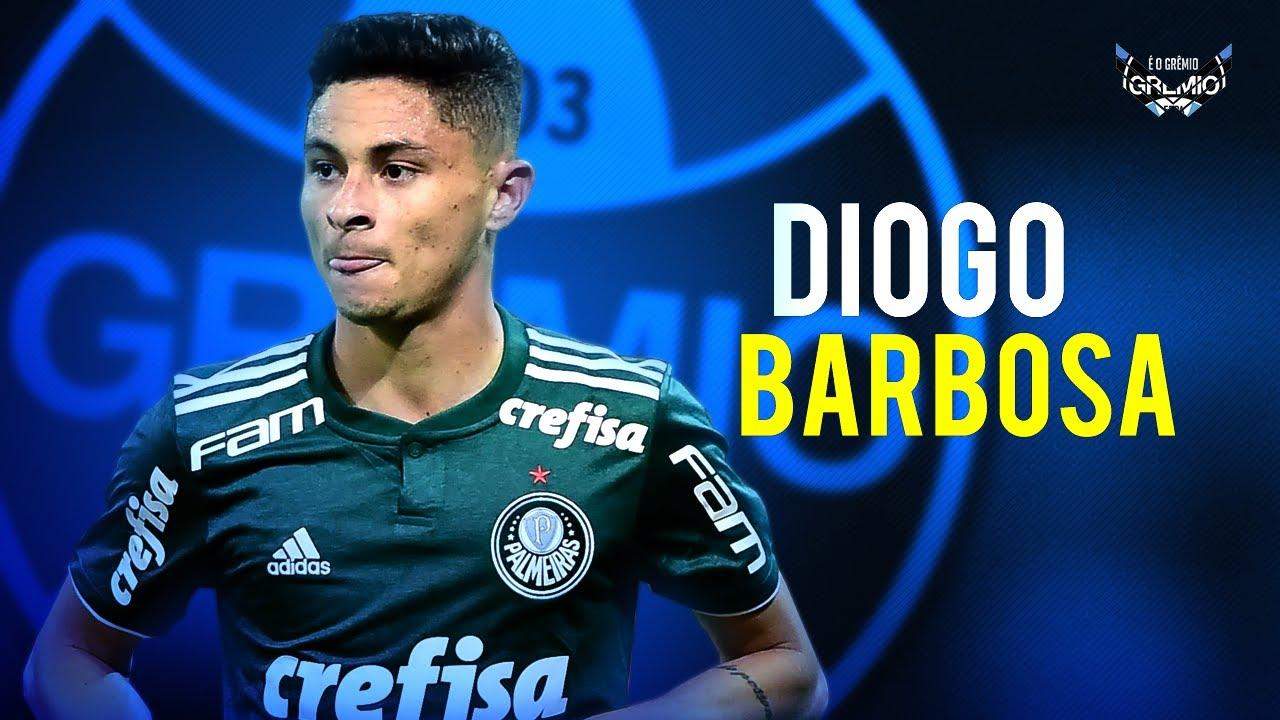 Diogo Barbosa •BEM VINDO AO GRÊMIO • Gols, Assistências, Dribles e Desarmes HD 2020