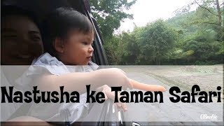 akhirnya Nastusha ke Taman Safari Bogor!
