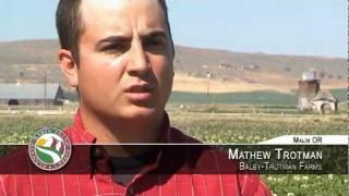 Potato Farmers Of The Klamath Basin