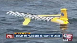 Researchers tracking red tide in Gulf of Mexico