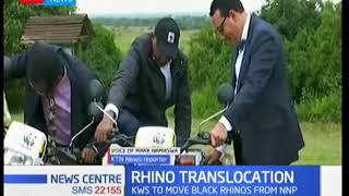 KWS moves black rhinos from Nairobi National Park