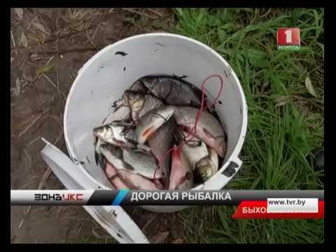Рыбалка электроудочкой дорого