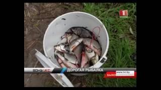 Рыбалка электроудочкой дорого обойдется браканьерам. Зона Х(В Быховском районе задержали компанию браконьеров, которые использовали электроудочки. Варварским способ..., 2016-08-15T18:22:36.000Z)