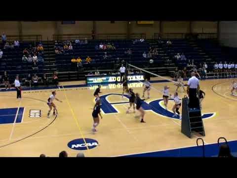 2017 Elmhurst Senior Volleyball Celebration