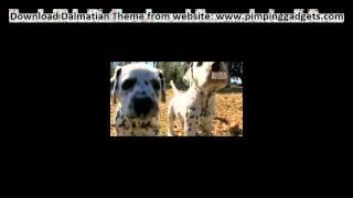 Dogs 101 Dalmatian + Exclusive  Windows 7 Theme Link