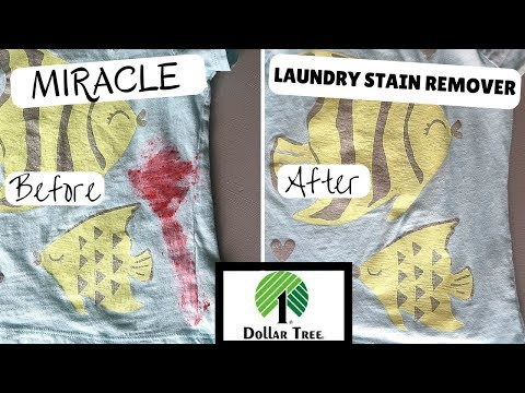 MIRACLE CHEAP LAUNDRY STAIN REMOVER HACK | ALL DOLLAR TREE CLEANING PRODUCTS