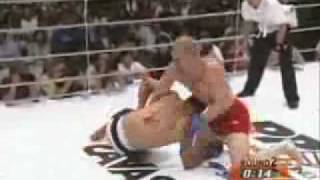 the art of grappling hl