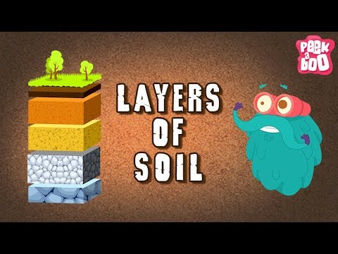 Layers Of Soil  The Dr Binocs Show  Best Learning s For Kids  Peekaboo Kidz