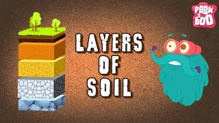 Layers Of Soil - The Dr. Binocs Show | Best Learning Videos For Kids | Peekaboo Kidz