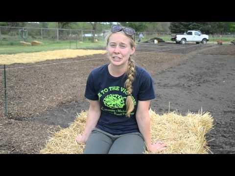 Building Community at the University of Michigan Campus Farm