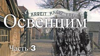 Лагерь смерти Освенцим. Польша. Часть 3