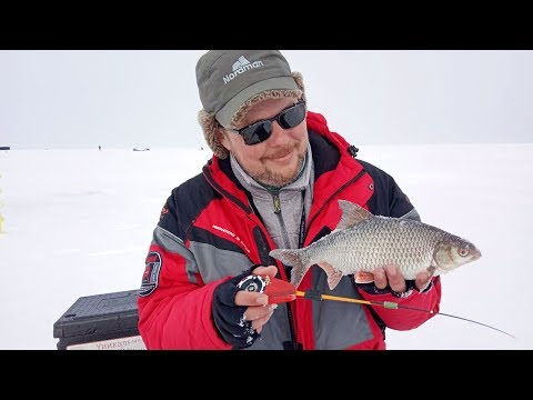 Сорога до полкило и мордатые окуни. Рыбалка на безнасадку и балансир в феврале на Горьковском водохранилище.