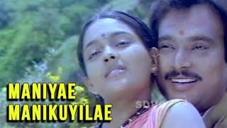 Maniyae Manikuyilae Full Song | நாடோடி தென்றல் | Nadodi Thendral Video Song | Ilaiyaraja Songs