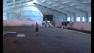 Урок верховой езды в Русской усадьбе